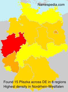 Pliszka - Germany