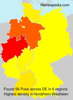 Surname Puke in Germany