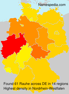 Surname Rauhe in Germany