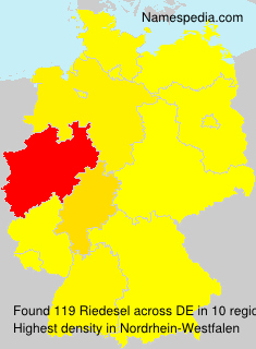 Surname Riedesel in Germany