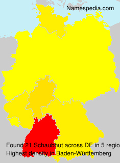 Surname Schaubhut in Germany
