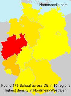 Schauf