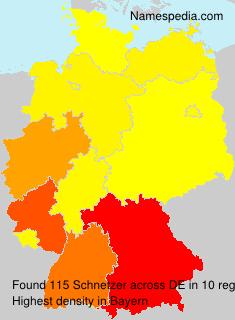 Schnetzer