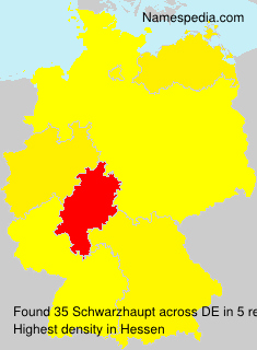 Schwarzhaupt