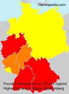Steward - Germany