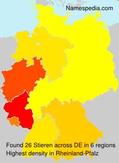 Stieren - Germany