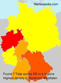 Talip - Germany