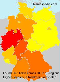 Familiennamen Tekin - Germany