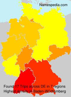 Familiennamen Trips - Germany