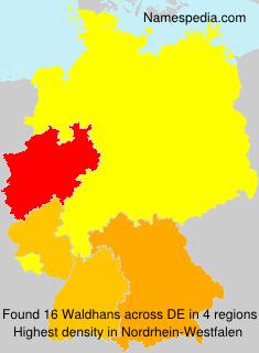 Surname Waldhans in Germany