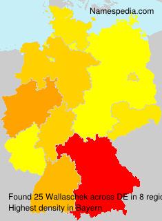 Wallaschek