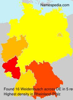 Weidenbusch