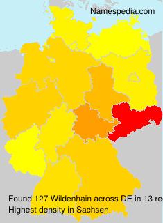 Wildenhain