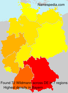 Surname Wildmann in Germany