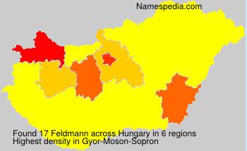 Surname Feldmann in Hungary