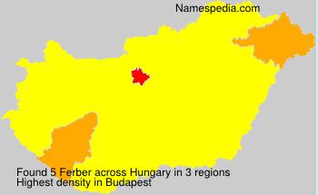 Familiennamen Ferber - Hungary