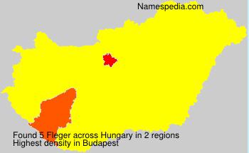 Familiennamen Fleger - Hungary