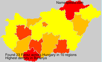 Surname Fleisz in Hungary