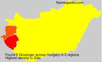 Grosinger
