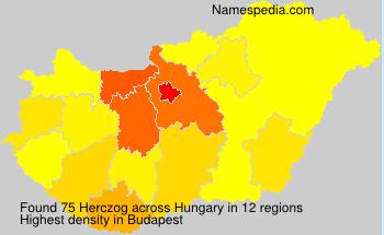 Herczog