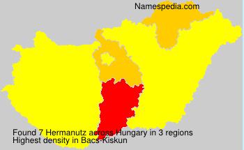 Hermanutz