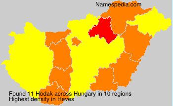 Familiennamen Hodak - Hungary