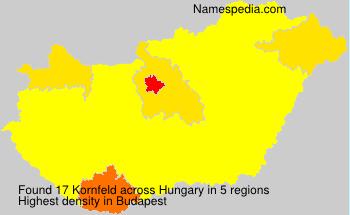 Kornfeld