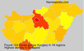 Familiennamen Koves - Hungary
