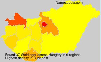 Familiennamen Weidinger - Hungary
