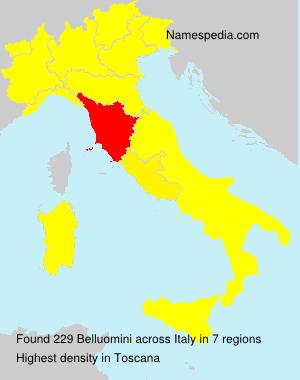 Surname Belluomini in Italy