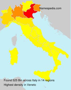 Familiennamen Bin - Italy