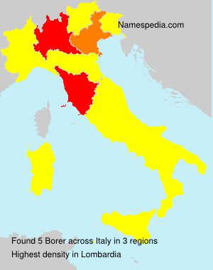 Surname Borer in Italy