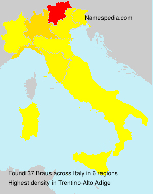 Surname Braus in Italy