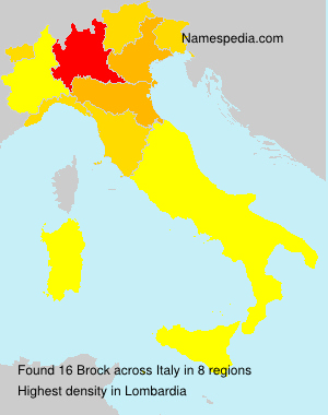 Surname Brock in Italy