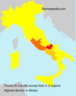 Surname Carcillo in Italy
