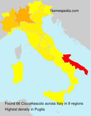 Surname Ciccomascolo in Italy