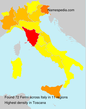 Surname Ferini in Italy