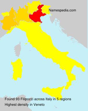 Surname Filipozzi in Italy
