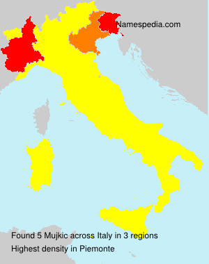 Surname Mujkic in Italy