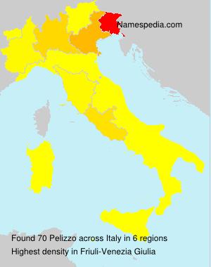 Surname Pelizzo in Italy