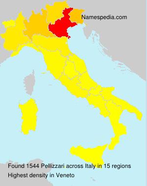 Surname Pellizzari in Italy