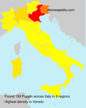 Surname Puppin in Italy