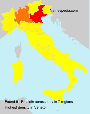 Surname Rinaldin in Italy