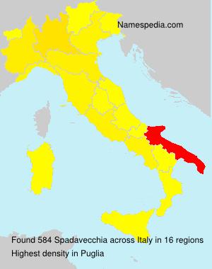Surname Spadavecchia in Italy