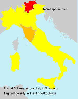 Surname Tame in Italy
