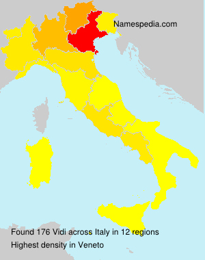 Surname Vidi in Italy