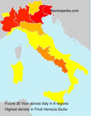 Surname Visin in Italy