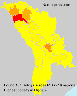 Bologa