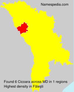 Cicoara