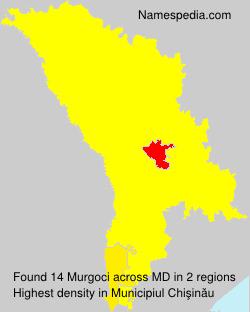 Murgoci
